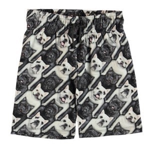 Molo - Alim Shorts, English Bulldog