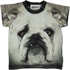 Molo - Egon T-shirt SS, Black'n White Bulldog