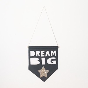 Miny & Mo Banner  - Dream Big